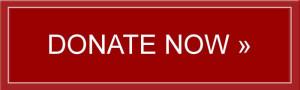 Donate Button 2