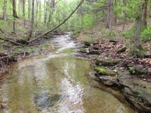 Land protected by conservation easement through ORLT, Missouri Land Trust