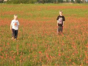 Children play in an ORLT Land Trust protected field