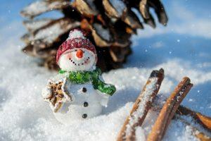 snow-man-1882635_1920