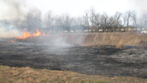 Scorched earth after an Ozark prairie is set ablaze