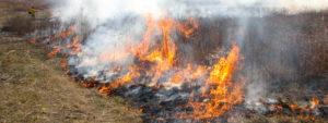 An Ozark prairie ablaze with orange flames
