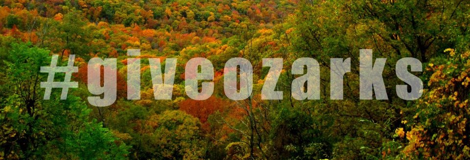 "The word ""#giveozarks"" transparent atop a fall foliage vista"