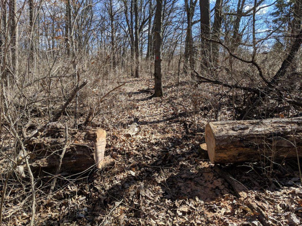 Schultz Nature Preserve